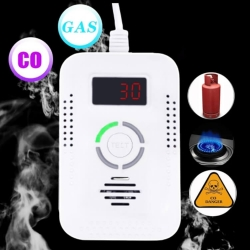 All In 1 CO Carbon Monoxide Detector Natural Gas Alarm