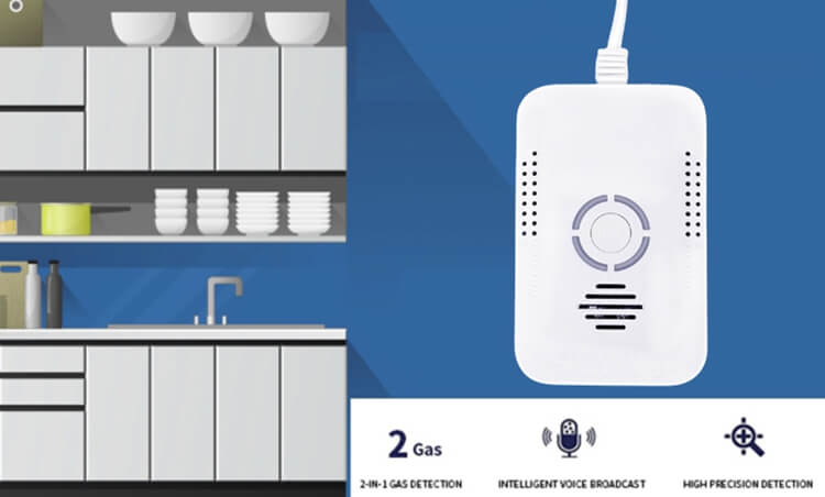 carbon monoxide and natural gas detector