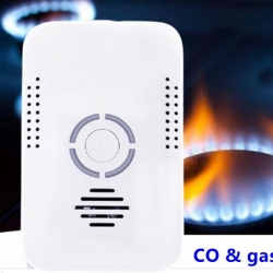 2 in 1 carbon monoxide and natural gas detector alarm